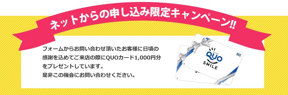 ネットからの申し込み限定キャンペーン!!