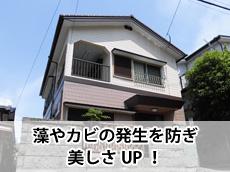 20140213t_top.jpg