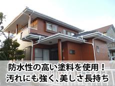 20140302y_top.jpg