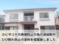 Top_S_tarami.jpg